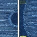 pet-marked-9-3-10-6-laser-comparison