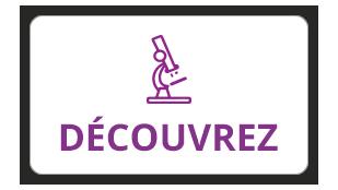 discover-découvrez
