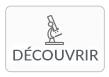 icon-découvrir-active